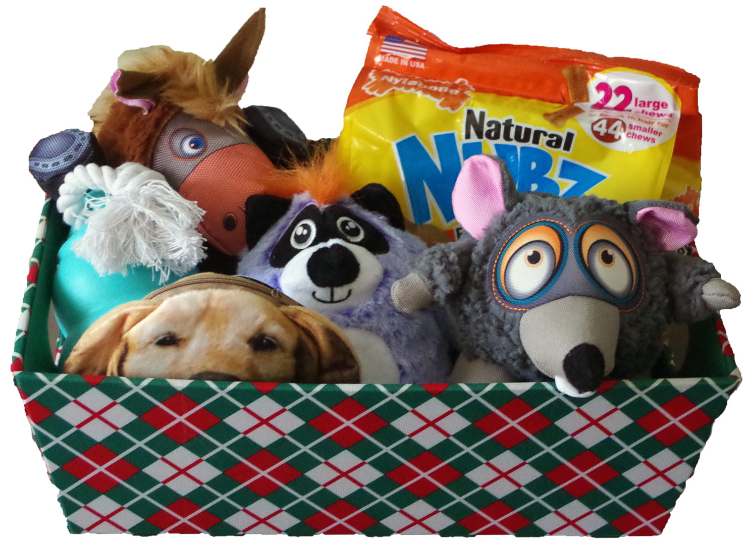 Dog-themed red, white and green patterned basket - Golden Retriever change purse, Nubz dog treats, Kong dog toys, and barnyard animal dog toys