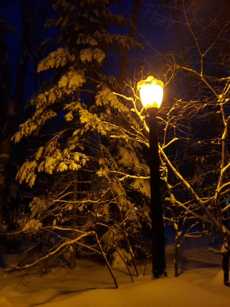 Tall street lamp glowing light around snow-covered trees