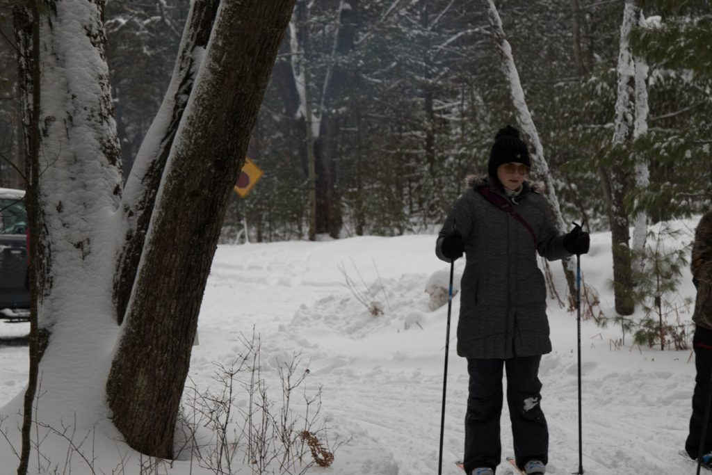 Cross country skier rounds turn on wooded trail