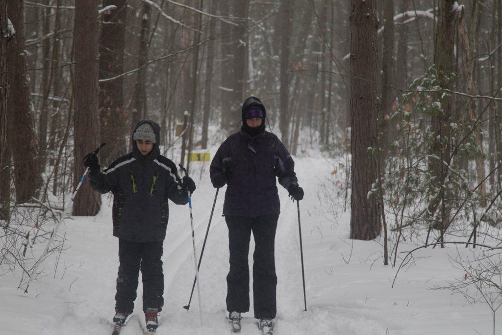 Two skiers on intermediate trail