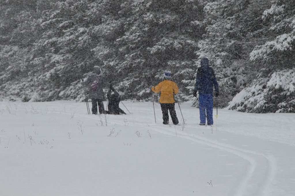 Skier trying to get up after falling on nursery trail with snow falling