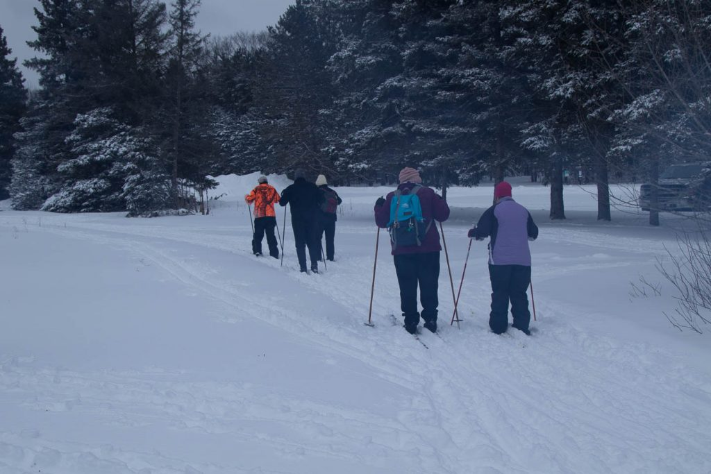 Rear view of five skiers on the nursery trail