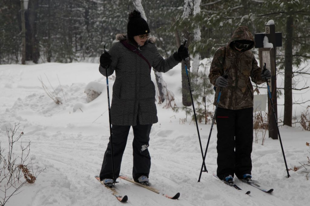 Guide instructs cross-country skier